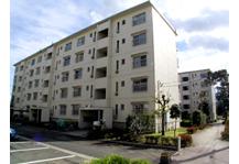 303000 成田ニュータウン 加良部一丁目