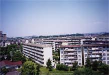 401290 洋光台北