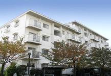 402500 金沢シーサイドタウン 柴