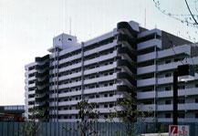 402930 ライトタウン茅ヶ崎