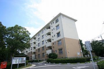 801770 桜丘
